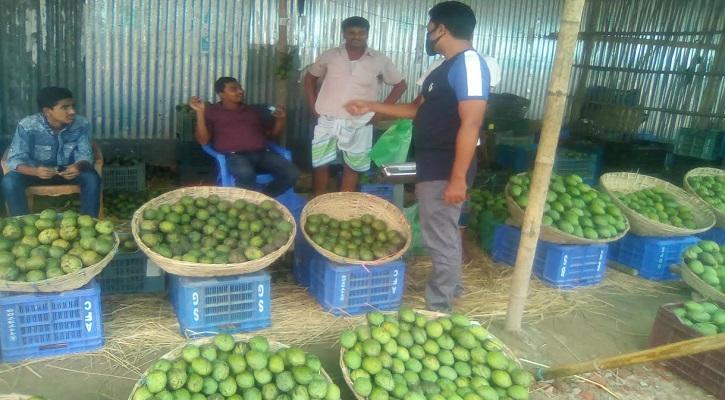 ঠাকুরগাঁওয়ে এবার জমেনি ফলের বাজার