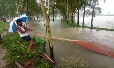 দিনাজপুরে নদীর পানি বৃদ্ধি, নিম্নাঞ্চল প্লাবিত