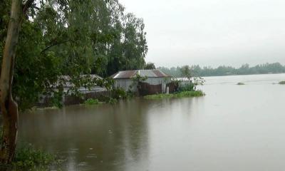 কুড়িগ্রামে নদ-নদীর পানি বৃদ্ধি অব্যাহত
