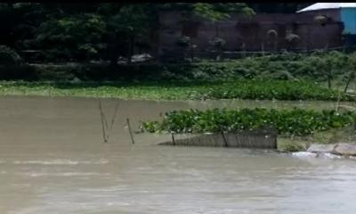 রাজবাড়ীতে পদ্মার পানি বিপৎসীমার উপরে