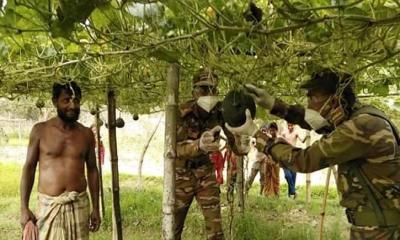 চাষিদের লোকসান ঠেকাতে মাঠ থেকে সবজি কিনছে সেনাবাহিনী