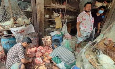 মাছ-মুরগিতে দামের বড় ফারাক: দিশেহারা ক্রেতা