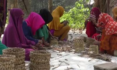 গাইবান্ধার তৈরী কচুরীপানার সামগ্রী বিক্রি হচ্ছে বিদেশে