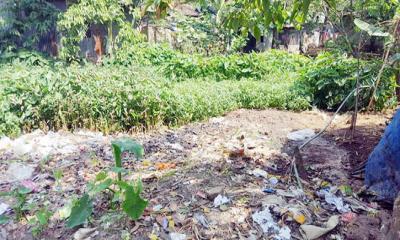 মশার জালায় অতিষ্ট রূপগঞ্জবাসীঃ জনপ্রতিনিধিরা নীরব