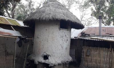 ধামইরহাটে বিলুপ্তির পথে ধানের গোলা