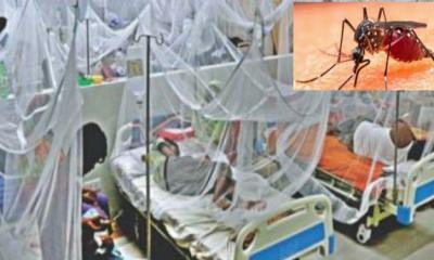 দেশে ডেঙ্গু আক্রান্ত হয়ে আরও ২১১ জন হাসপাতালে ভর্তি